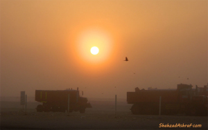 Sunrise in Abu Dhabi Desert